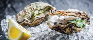 tout-oyster-day