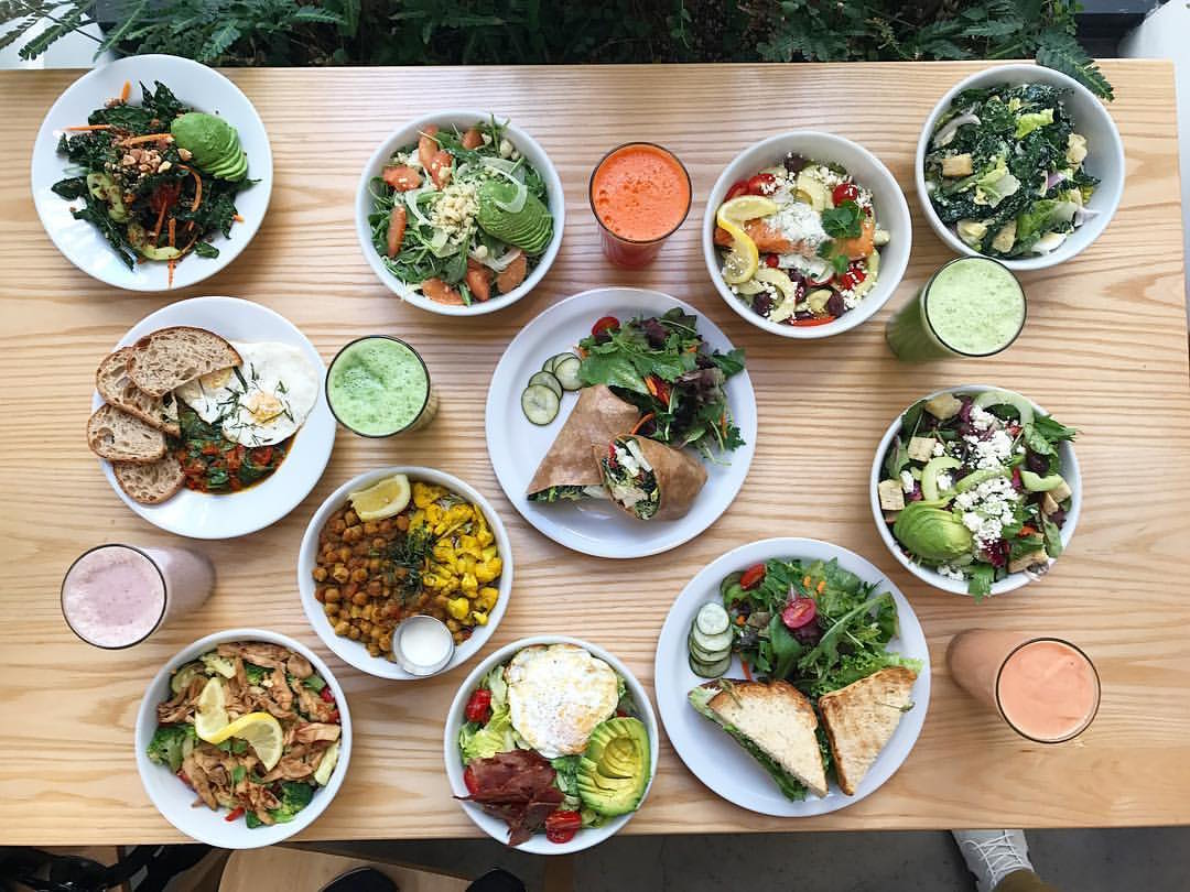 A spread of plant-based cuisine at the Plant Cafe