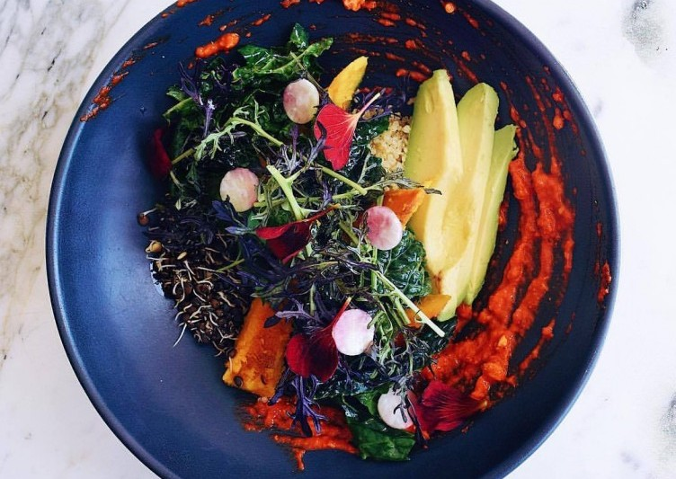 PLANT BOWL. SPROUTED LENTIL + QUINOA. PATTY PAN SQUASH. KALE. AVOCADO. PRESERVED LEMON TAHINI. PIQUILLO ROMESCO at Plant Food + Wine