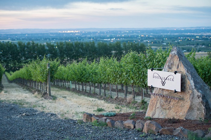 Doubleback Winery