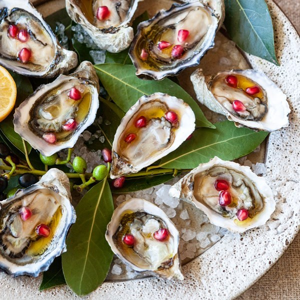 Holiday oysters at Shed
