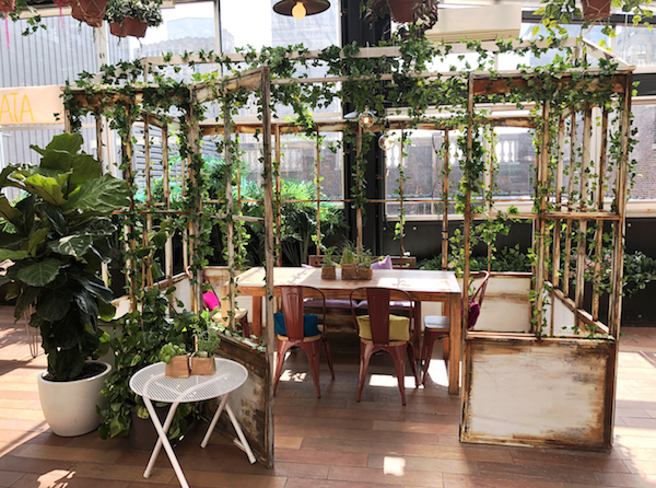 Serra_Greenhouse