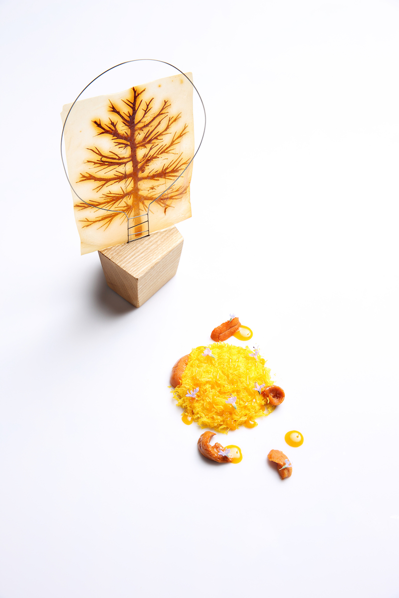 Somni-Egg - uni and parmesan papyrus