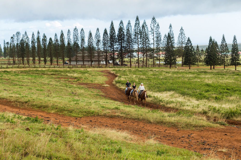 Horseback riding is one the many activities available at the resort