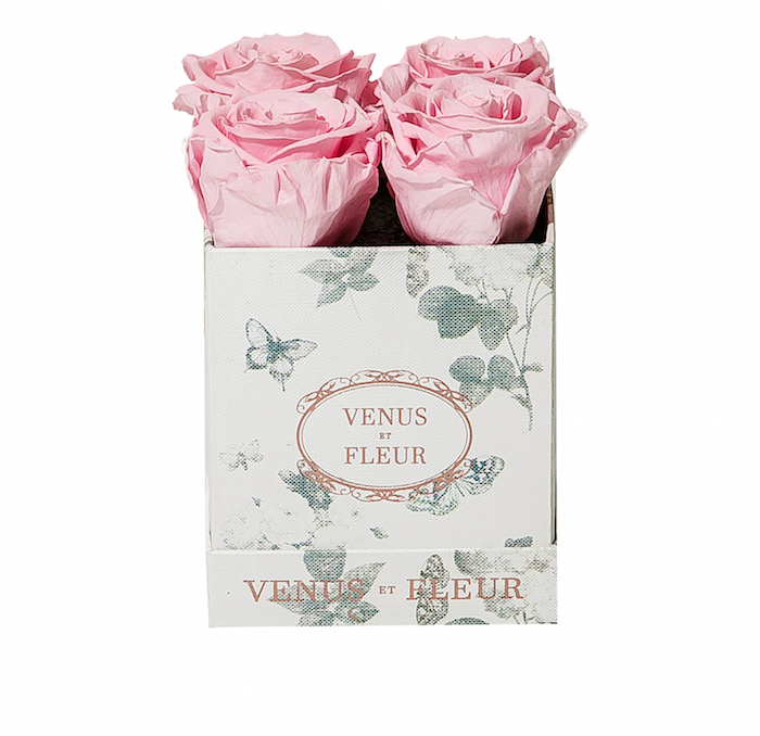 Le Petite Papillon - Pink Roses (6)