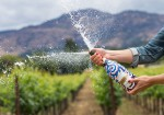 Domaine Chandon Pulls Out All The Stops In Its 45th Year
