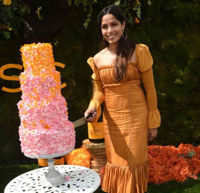 Freida Pinto cuts the cake