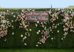 Rosé Garden Wall