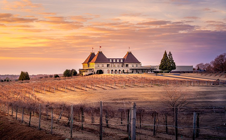 Experience A French Getaway At Chateau Elan Winery And Resort