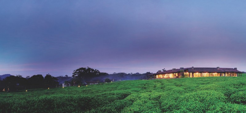 ONE&ONLY NYUNGWE HOUSE