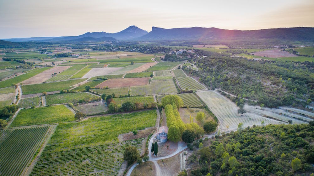 A bird's eye view of the appellation