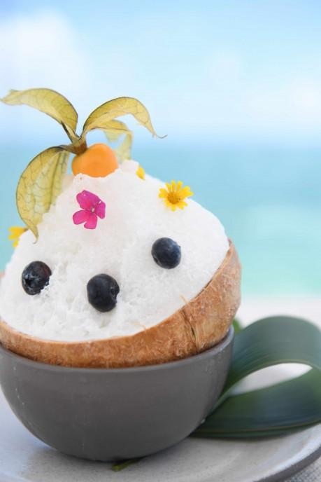 Coconut Piragua 2