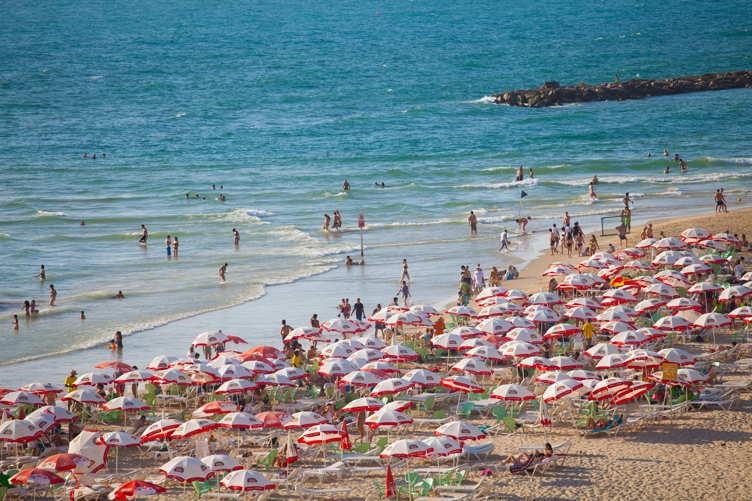 Tel Aviv 13