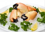 It's Stone Crab Season: Where To Enjoy Them Best In Miami