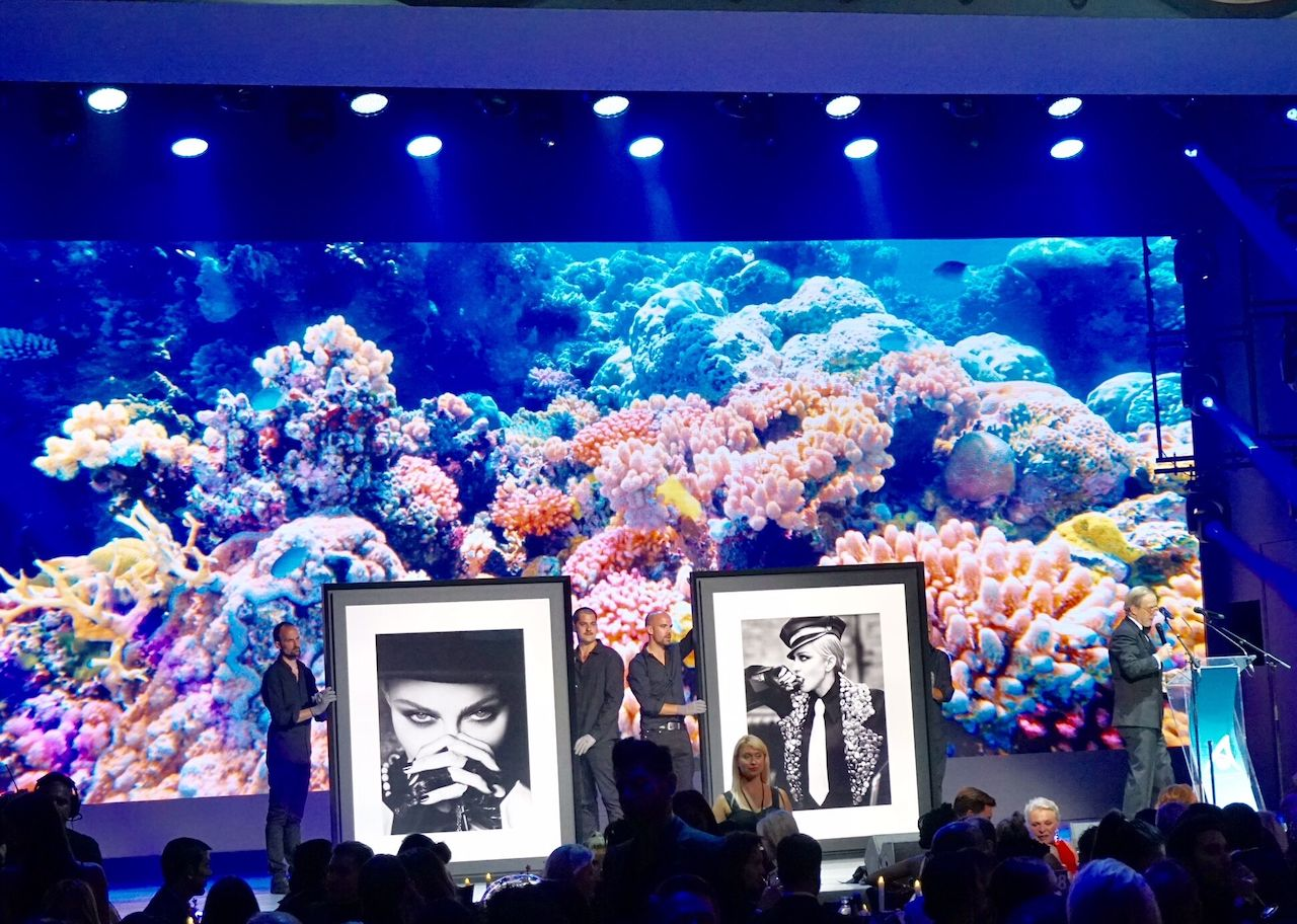 Special photographs of Madonna were auctioned at the gala