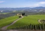 Inside Haute Living's Tuscan Tasting Experience At Castiglion Del Bosco