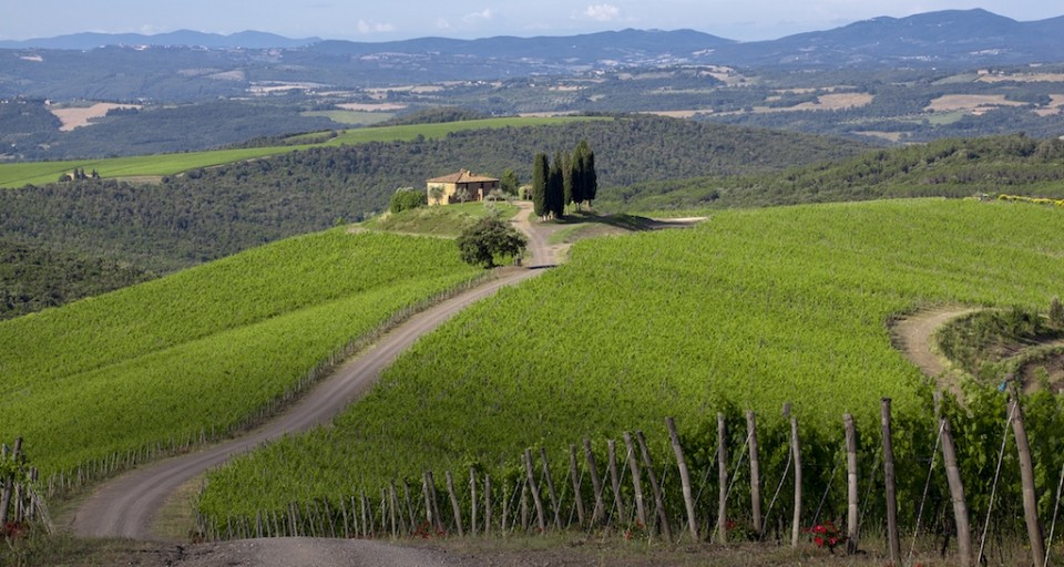 Inside Haute Living's Tuscan Tasting Experience At Castiglion Del Bosco