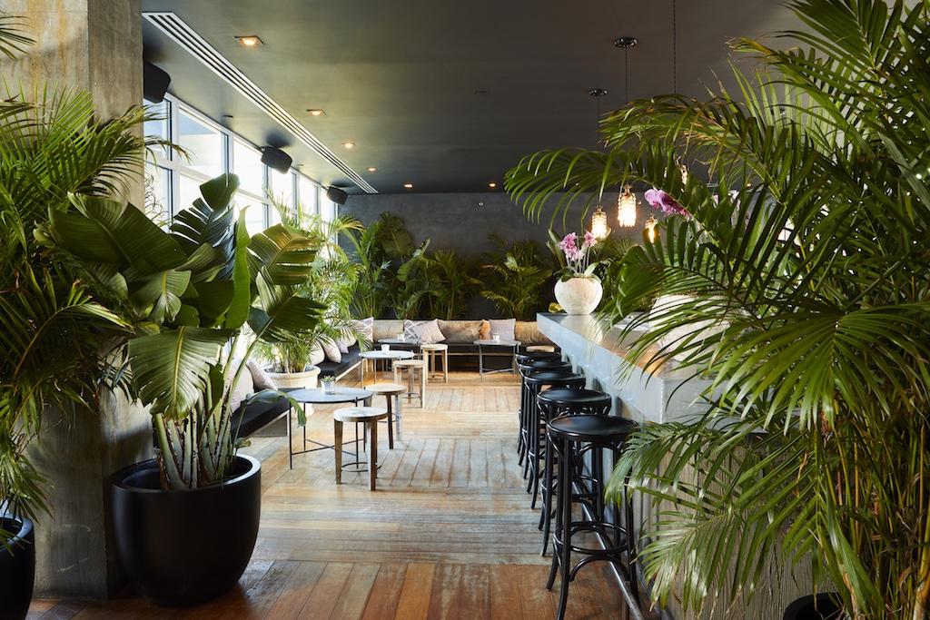 Gitano Jungle Room Opens At The James Hotel New York In Soho