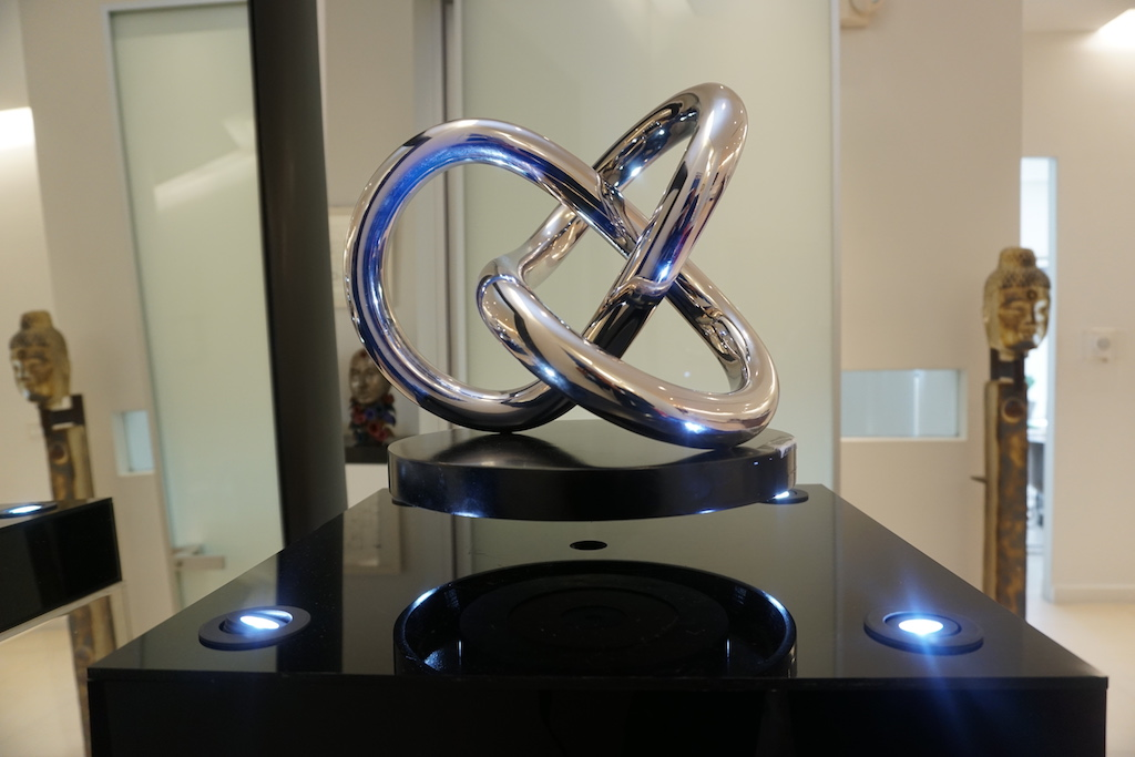 Dr. Salomon sculpture