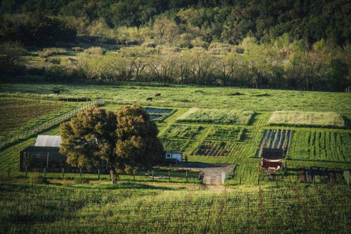 SingleThread Farm